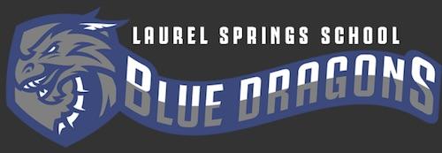 Laurel Springs School District