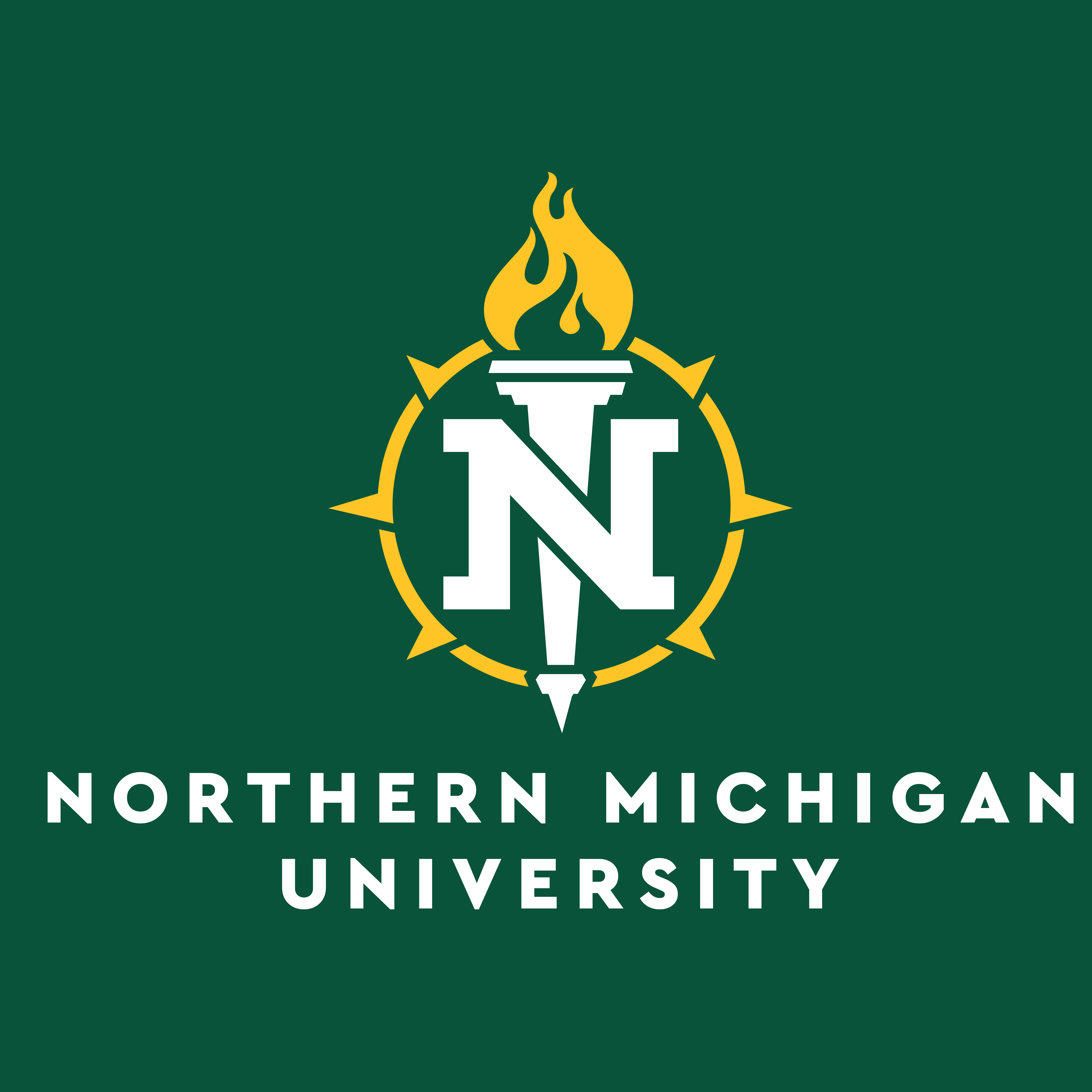Northern MI University Logo