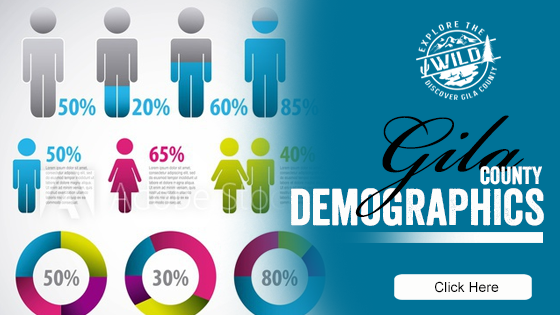 Gila County Demographics