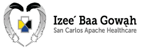 San Carlos Apache Healthcare Corporation